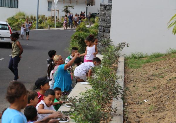Action « Bombes à fleurs » à la résidence Bibasse, Pistache, Sapotille