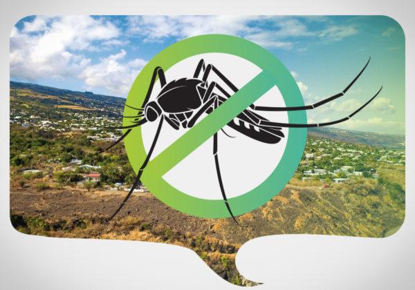Ensemb contre la dengue!